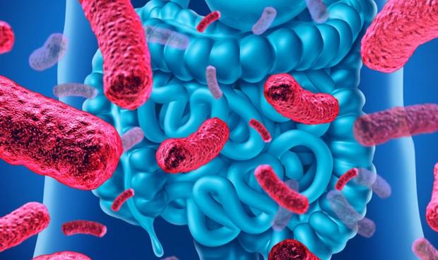 Microbiota COVID